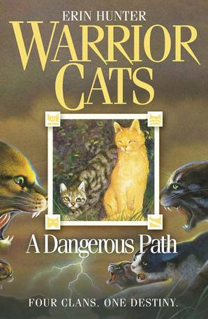 A Dangerous Path Paperback by Erin Hunter